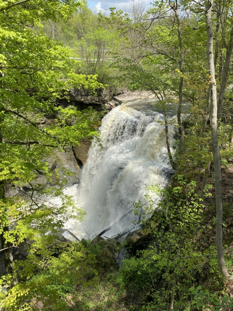 view of Brandywine Falls from above.