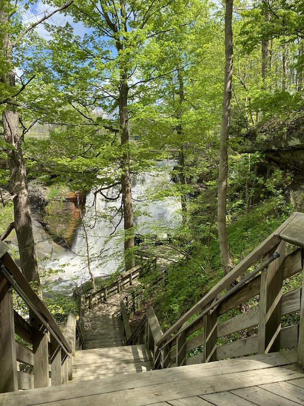 view of Brandywine Falls from the Lower Deck.