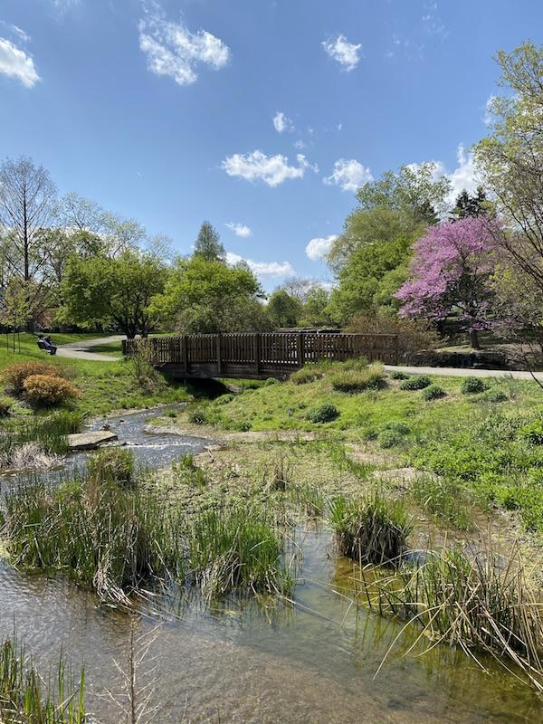A bridge over the cascades area in Franklin Park.