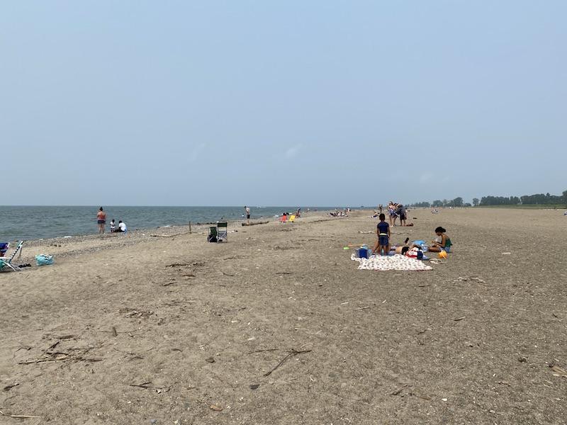 beach area at Headlands Beach State Park.