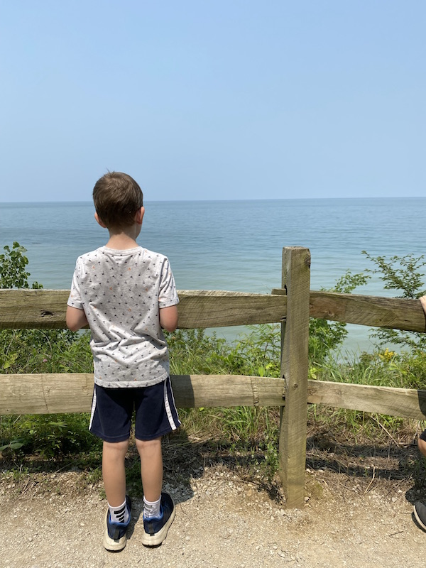 A boy looking out over the observation area at Lake Erie Bluffs.