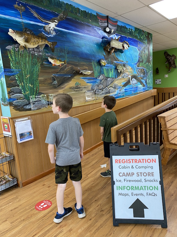 two boys looking at the fish wall at the Welcome Center at Pleasant Hill Lake Park.