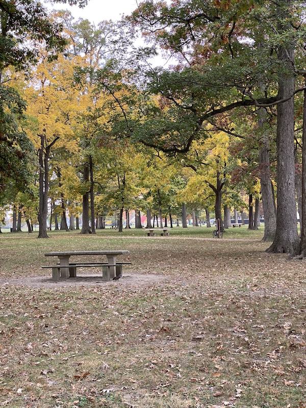 walking paths and picnic tables in Westgate Park.